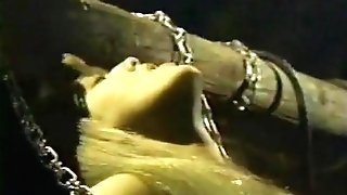 Supreme Antique Scene Incl Hot Blonde Cougar